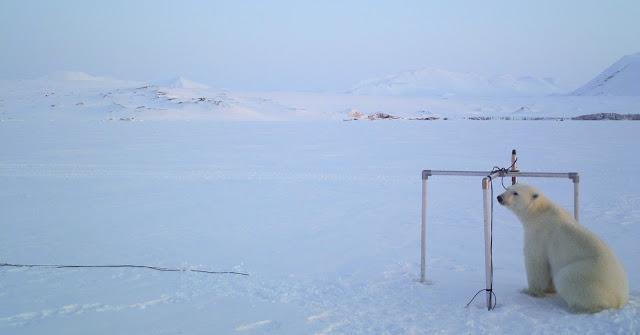 Strahlungsmessstation auf Spitzbergen